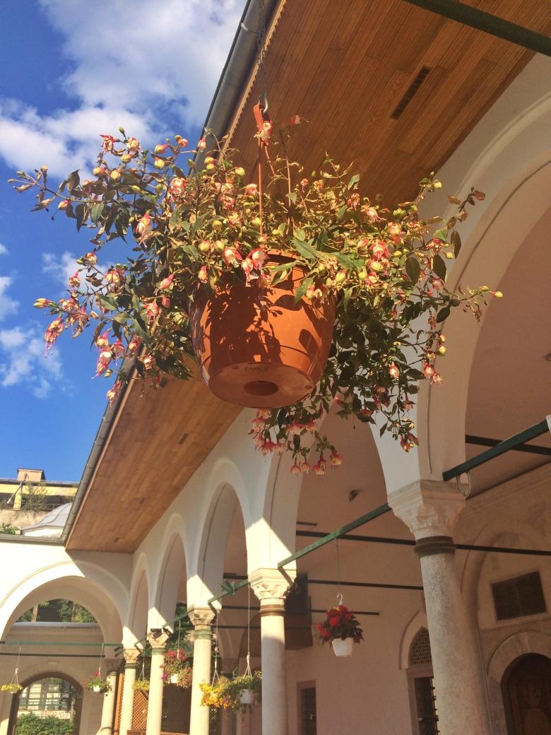 4 - Hünkar Camisi_ndeki Küpe Çiçeği